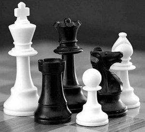 Stachowiak Abundance Preterition Black White